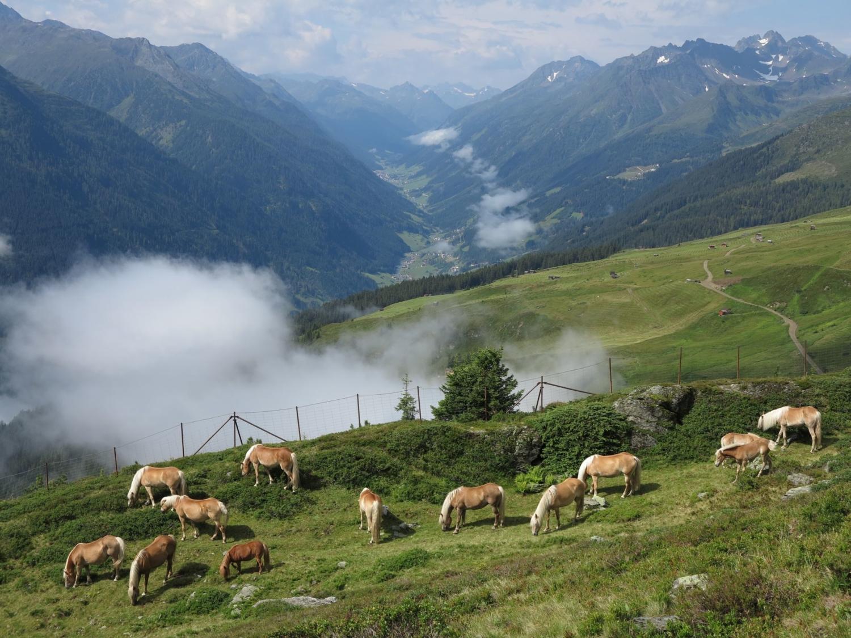 Sommerurlaub Haus Tschiderer, Haus Pfeifer, Kappl, Paznauntal, Tirol